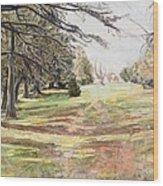 Maymont Landscape Wood Print