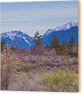 Mazama From Wolf Creek Wood Print
