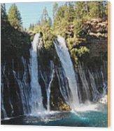 Mcarthur-burney Falls 1 Wood Print