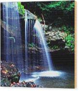 Mccoy Falls Birch River Wood Print