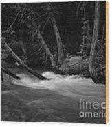 Mcdonald River   #1983 Wood Print
