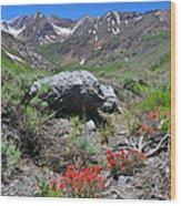 Mcgee Creek Wildflowers Wood Print