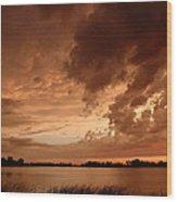 Mciver Lake Wood Print