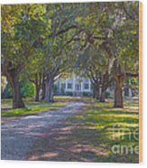 Mcleod Plantation Wood Print