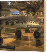Me-262 Swallow Wood Print