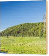 Meadow And Forest Wood Print