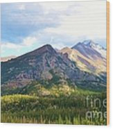 Meadow And Mountains Wood Print