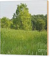 Meadow Blossoms Wood Print