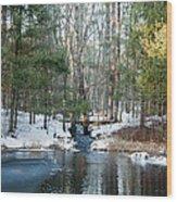 Meadow Brook Pond 1 Wood Print