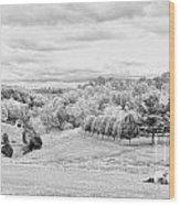 Meadow Bw Wood Print by Chuck Kuhn