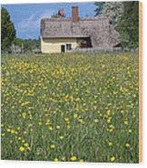 Meadow Cottage Wood Print by Stephen Norris