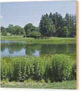 Meadow Lake Wood Print
