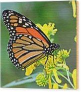 Meadow Monarch Wood Print