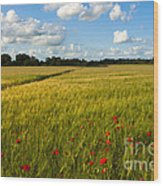 Meadow Of Poppies Wood Print