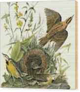 Meadow Starling Or Meadow Lark. 1. Male. 2 Wood Print