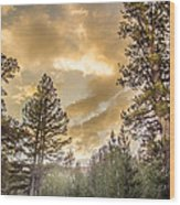 Meadow Sunset Gold Wood Print