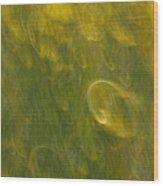 Meadow Sweep Wood Print