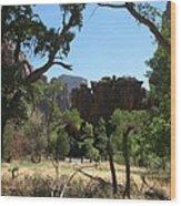 Meadow Zion Park Wood Print