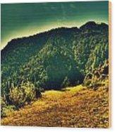 Meadows 2 Wood Print