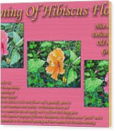 Meaning Of Hibiscus Flowers Wood Print