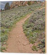 Medicine Bow Blair Trail #6 Wood Print