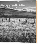 Medicine Springs Fenceline Wood Print