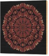Medicine Wheel Dragonspur Fractal K12-3 Wood Print