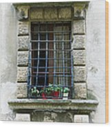 Medieval Window With Iron Grilles Wood Print