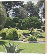Mediterranean Garden - Cote D Azur Wood Print