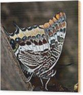 African Spirit Wood Print