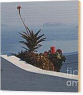 Mediterranean Views Wood Print