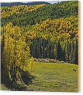 Medowland Wood Print