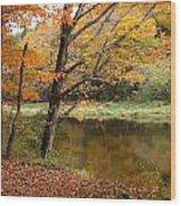 Meduxnekeag River 1 Wood Print