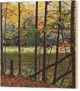 Meduxnekeag River 4 Wood Print
