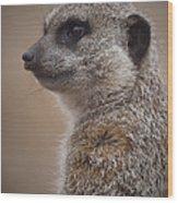 Meerkat 9 Wood Print by Ernie Echols