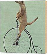 Meerkat On A Black Penny Farthing Wood Print