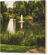 Meet Me By The Fountain Wood Print