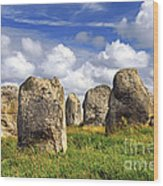 Megalithic Monuments In Brittany Wood Print by Elena Elisseeva