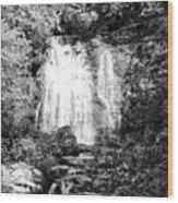 Meigs Falls Smoky Mountains Bw Wood Print