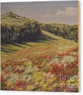 Melkow Trail  Wood Print