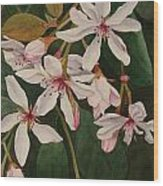 Melody Wood Print