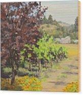 Melrose Morning Wood Print