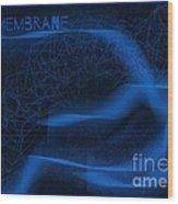 Membrane 2 Wood Print