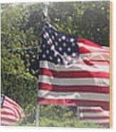 Memorial Day Wood Print by James Barrere