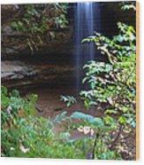 Memorial Falls I Wood Print