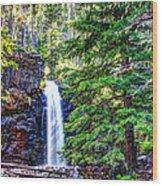 Memorial Falls In Montana Wood Print