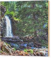 Memorial Falls Logjam Wood Print