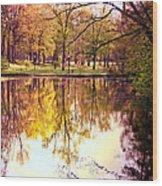 Memorial Park - Henry County Wood Print