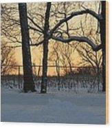 Memories Of Winter Wood Print