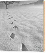Memory Traces Of A Cold Day Wood Print